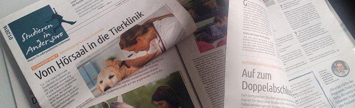 Gestaltungskonzept Zeitung – erste Ausgabe erschienen