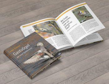 """Layout Buch """"Gastvögel der Insel Spiekeroog"""""""